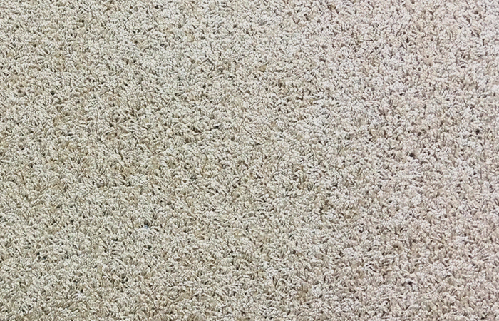 Taupe Carpet Flooring Color Selection